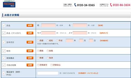 プロミス申込画面の写真